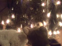 Vroijke Kerst