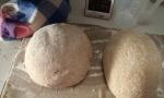 Splet- en kokosmeel