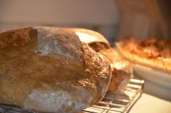 Rogge-tarwe broodjes