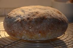 Aardappelbrood