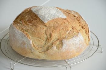 Witbrood