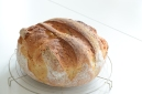 Grof melkbrood